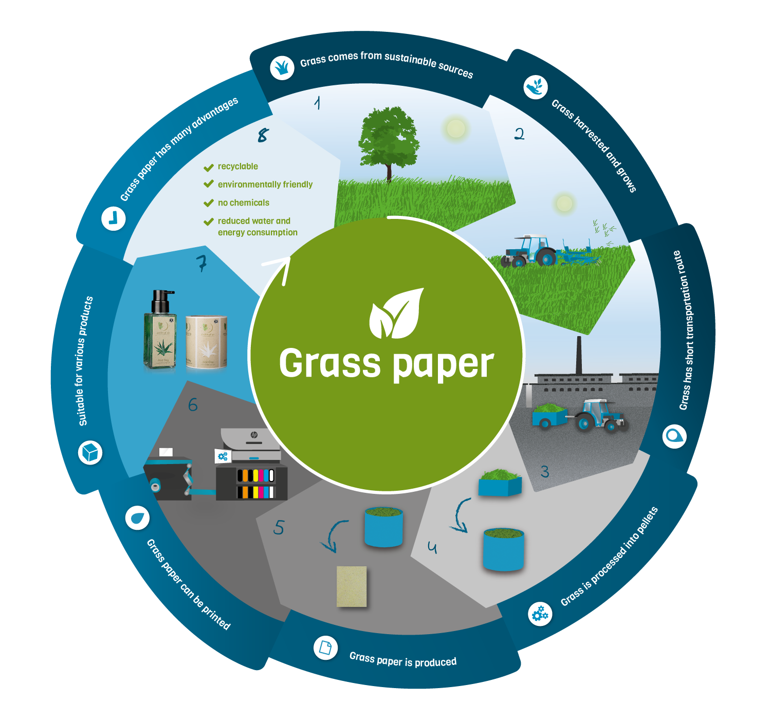 Grass Paper cycle
