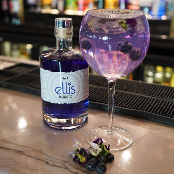 Ellis Gin bottle and glass